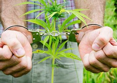 kakoe-nakazanie-grozit-za-upotreblenie-narkotikov